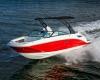 Sea Ray SDX 250 Bild 05
