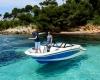 Sea Ray SPX 190 Bild 06