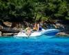 Sea Ray SPX 190 Bild 09