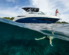 Sea Ray Sundancer 290 Sport Cruiser_6