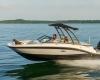 Sea Ray SPX 190 OB Bild 4