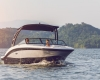 Sea Ray SPX 190 OB Bild 6