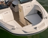 Sea Ray SPX 190 Bild 22