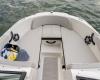 Sea Ray SPX 210 OB Bild 5