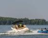 Sea Ray SPX 230 Bild 12
