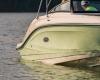 Sea Ray SPX 230 Bild 13