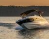 Sea Ray SDX 290 1