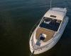 Sea Ray Sundyncer 350 Coupe 8